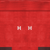 Wales home socks.png